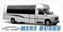 New York Mini Bus rental